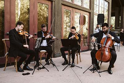 String Quartet Shape of You